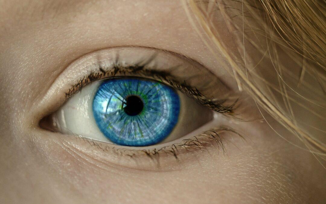 MedUni Wien diagnostiziert Netzhauterkrankungen mit KI
